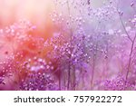 Sweet Purple Background Of...