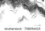black and white horizontal wavy ... | Shutterstock . vector #758096425