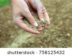 close up of hands sowing grass... | Shutterstock . vector #758125432