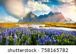 wonderful summer view of... | Shutterstock . vector #758165782