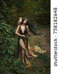 a forest fairy wanders through... | Shutterstock . vector #758182648