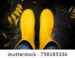 yellow rubber saogi in autumn...   Shutterstock . vector #758185336