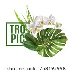 vector botanical banner with... | Shutterstock .eps vector #758195998