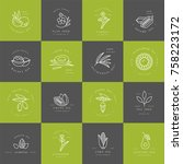 vector set design templates and ...