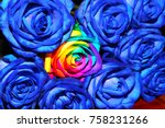 bouquet of blue multicolored... | Shutterstock . vector #758231266