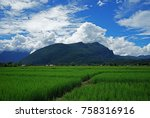 rice field with mountain view | Shutterstock . vector #758316916