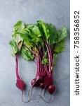 beet  beetroot bunch on grey... | Shutterstock . vector #758356852