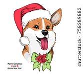 hand drawn dog. cute welsh... | Shutterstock .eps vector #758389882