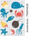 fish aquarium tropical aquatic... | Shutterstock .eps vector #758394028
