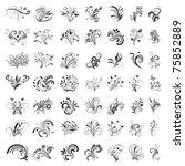 set of floral design elements....