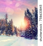 forest in winter covered by... | Shutterstock . vector #758633845