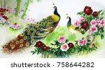 a pair of peacocks on a cherry... | Shutterstock . vector #758644282