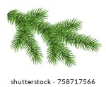 spruce branch isolated on white ... | Shutterstock .eps vector #758717566