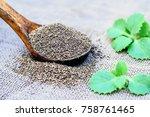 trachyspermum ammi  ajwain... | Shutterstock . vector #758761465