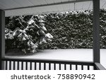 looking at the  snowfall from a ... | Shutterstock . vector #758890942