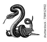 viper snake. serpent cobra and... | Shutterstock .eps vector #758912902