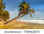 gorgeous tropical beach in... | Shutterstock . vector #758963875