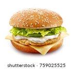 Fresh Chicken Burger Isolated...