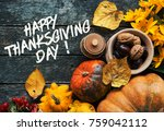 happy thanksgiving day concept  ... | Shutterstock . vector #759042112