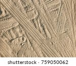 Tracks And Footprints In The...