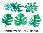 watercolor illustration with... | Shutterstock . vector #759286708