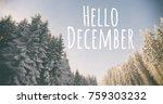 blurry  winter park on...   Shutterstock . vector #759303232