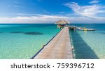 perfect beach banner  tropical... | Shutterstock . vector #759396712