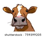 curious cow  looking at you   Shutterstock .eps vector #759399205
