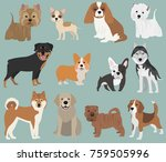species of the breeds of dogs ... | Shutterstock .eps vector #759505996