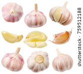 collection of garlic isolated... | Shutterstock . vector #759512188