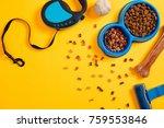 pet accessories  food  toy. top ... | Shutterstock . vector #759553846