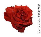 polygonal blooming red rose ... | Shutterstock .eps vector #759567955