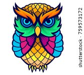 Stock vector colorful owl tee design concept 759573172