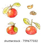 ink  pencil  watercolor the... | Shutterstock .eps vector #759677332