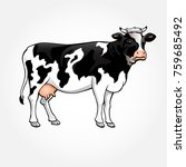 a cow vector illustration  | Shutterstock .eps vector #759685492