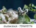 a beautiful bouquet of white... | Shutterstock . vector #759695776