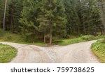 A Single Mountain Road Splits...