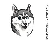 cute husky face illustration.... | Shutterstock .eps vector #759851212