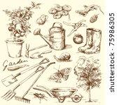 gardening tools | Shutterstock .eps vector #75986305