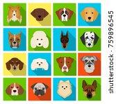 doberman  dalmatian  dachshund  ... | Shutterstock . vector #759896545