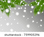christmas tree branches on... | Shutterstock .eps vector #759905296