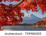 Mount Fuji  Autumn In Mount...