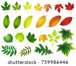 vector illustration  set of... | Shutterstock .eps vector #759986446