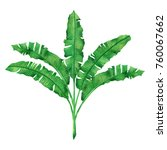 watercolor painting green... | Shutterstock . vector #760067662