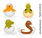 baby animals hatch eggs or... | Shutterstock .eps vector #760114522