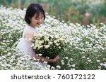 hanoi vietnam november 20 2017... | Shutterstock . vector #760172122