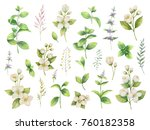 hand drawn watercolor set green ... | Shutterstock . vector #760182358