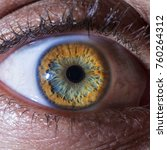 blue and yellow eye | Shutterstock . vector #760264312