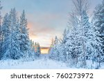 panoramic view of beautiful and ... | Shutterstock . vector #760273972