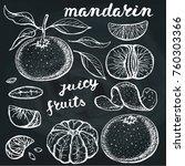 mandarines sketch.vector hand... | Shutterstock .eps vector #760303366